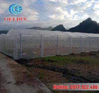 Mô hình nhà lưới nông nghiệp